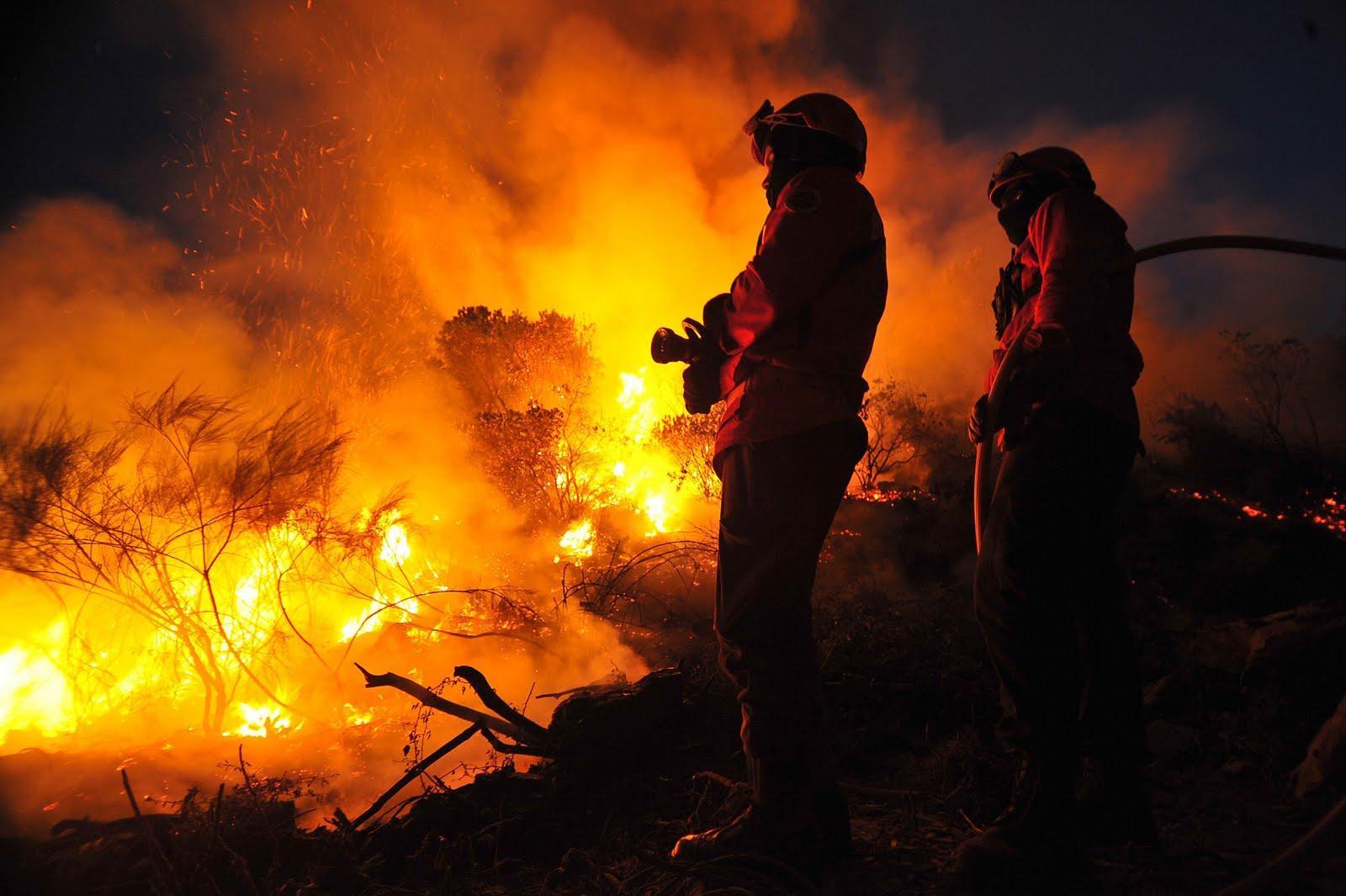 Apresentação do Dispositivo de Combate a Incêndios Florestais 2016 e análise de 2015